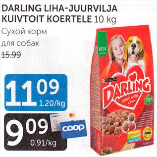 Allahindlus - DARLING LIHA-JUURVILJA KUIVTOIT KOERTELE 10 kg