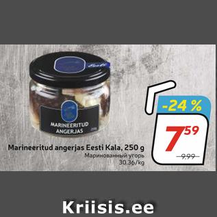 Allahindlus - Marineeritud angerjas Eesti Kala, 250 g