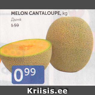 Allahindlus - MELON CANTALOUPE, kg