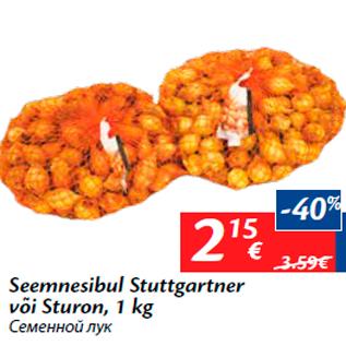 Allahindlus - Seemnesibul Stuttgartner või Sturon, 1 kg