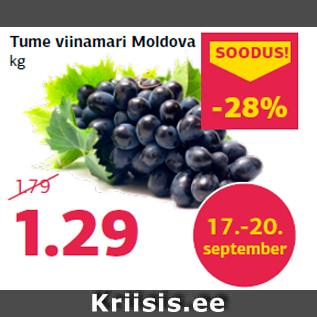 Скидка - Темный виноград из Молдовы кг
