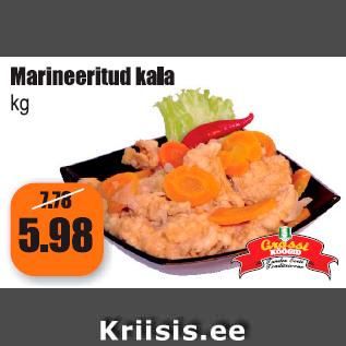 Allahindlus - Marineeritud kala kg