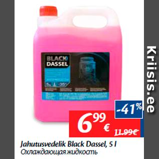 Allahindlus - Jahutusvedelik Black Dassel, 5 l