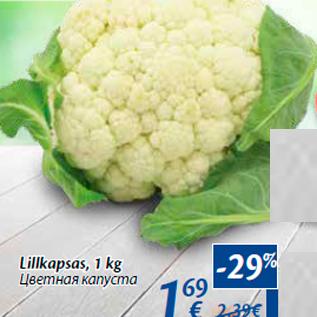 Allahindlus - Lillkapsas, 1 kg