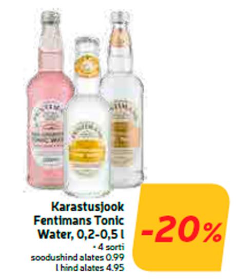 Karastusjook Fentimans Tonic Water, 0,2-0,5 l  -20%