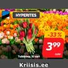 Букет тюльпанов, 10 шт